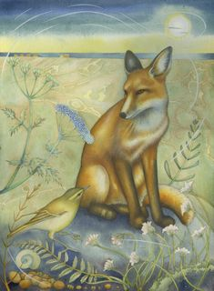 Kate Green | Fox in the Dunes