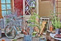 Title  The Hidden Bicycle   Artist  Cathy Anderson   Medium  Photograph - Digital Art