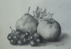 Pear, apple and grapes, still life sketch. Original art, graphite pencil drawing by Elena Whitman.