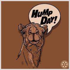 HUMP DAY!