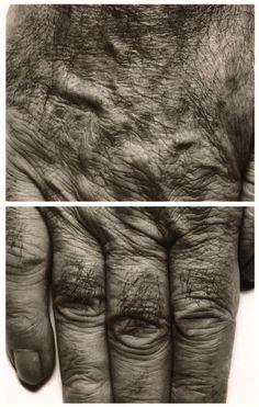 John Coplans, Self Portrait (Hands) (1988)