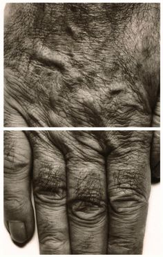 John Coplans, Self Portrait (Hands) (1988)