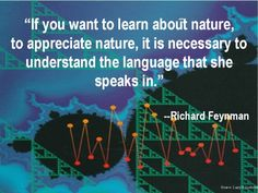 Richard Feynman Quote ~ With optimal health often comes clarity of thought. Click now to visit my blog for your free fitness solutions!