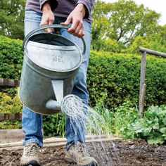 Amazingly useful cover crops enhance soil health and provide pest and weed control. Choose the right one for your garden.data-pin-do=
