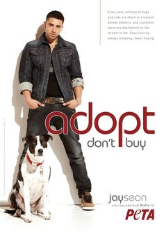 Singer Jay Sean Is 'Down' With Animal Adoption #celebs #peta #cute #dog #adopt