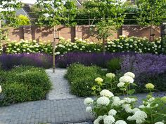 Tight garden with borders in white and purple. Slate trees along the garden walls provide the necessary shelter. Small Garden Arbour, Garden Arbor, Garden Paths, Persian Garden, Backyard Landscaping, Hydrangea Landscaping, Hedges, Dream Garden, Garden Projects