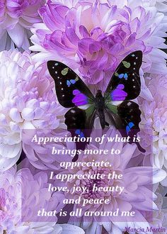 Appreciation of what is brings more to appreciate. I appreciate the love, joy, beauty and peace that is all around me.