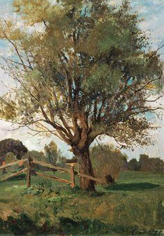 Carl Vinnen-Der alte Baum