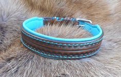 Leather collar, dog collar, collar, Brown turquoise