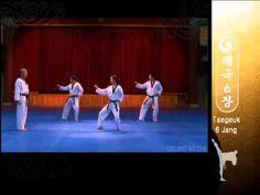 TAEGEUK 6 - Grand Master Kyu Hyung Lee - WTF Taegeuk Yuk Jang