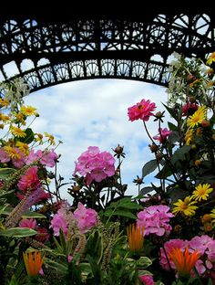 Paris in the spring... alluring and intoxicating.