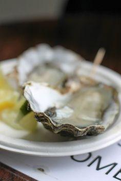 Austern (Oysters)