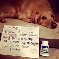 Plexus can help with your pets itchy skin and more! Man i love Plexus!!!