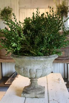 greige: interior design ideas and inspiration for the transitional home : Vintage Urns