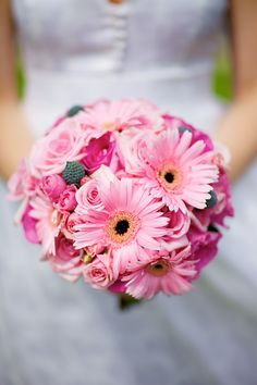 Gerber daisies in an array of shades of pink. Gerber daisies can be preserved, the priority is to receive all flowers as fresh as possible.
