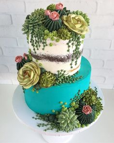 This Artist Creates Stunning Cakes You Would Rather Put On Your Windowsill Than . - All things succulent - Cake Pretty Cakes, Cute Cakes, Beautiful Cakes, Amazing Cakes, Cupcakes Succulents, Edible Succulents, Succulent Plants, Cacti, Bolo Tumblr