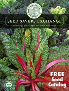 Seed Savers--a non-profit dedicated to preserving heirloom seeds. Best tomatoes I've ever tasted. Try the Hungarian Heart.