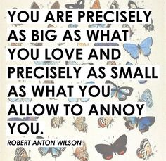 You are as big as what you love and as small as what you allow to annoy you.