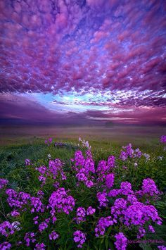 """""""Call To Me And I Will Answer You"""" Wisconsin Horizons By Phil Koch."""