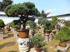 Suzhou – Die Stadt der schönen Gärten – Warum die Stadt der schönen Gärten?? Ganz einfach es gibt mindestens 13 große more pictures here https://www.overlandtour.de/suzhou-die-stadt-der-schonen-garten/