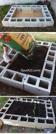Veggie garden idea