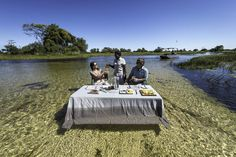 Pelo Camp - small camp on a little island in the Okavango Delta, Botswana Little Island, Small Island, Secluded Honeymoon, Okavango Delta, Holiday Destinations, Canoe, Trip Planning, Safari, Places To Visit