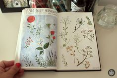 Saved by Lindsay Edwards (thantoay) on Designspiration Discover more Illustration Sketchbooks Behance Flowers Sketchbook inspiration. Sketch Journal, Artist Journal, Artist Sketchbook, Illustrations, Illustration Art, Creative Illustration, Visual Diary, Nature Journal, Sketchbook Inspiration