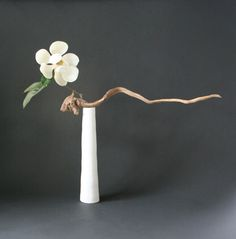 Ikebana by Keith Stanley (Magnolia and driftwood)