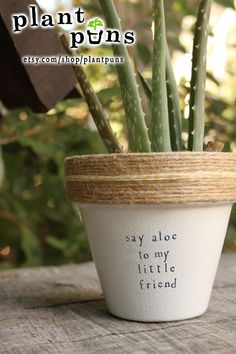 "4.3"" Say Aloe to my Little Friend // Terracotta pot, Perfect Mother's Day gift // indoor outdoor aloe planter // Put a Pun on it!  www.etsy.com/shop/plantpuns"