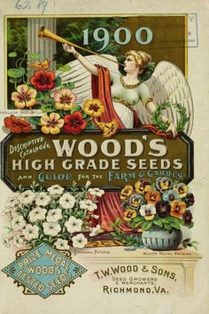 1900 catalogue with illustrations of petunias, pansies, nasturtiums and an angel holding a laurel crown. catalogue with illustrations of petunias, pansies, nasturtiums and an angel holding a laurel crown.
