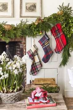 Tartan Stockings  - CountryLiving.com