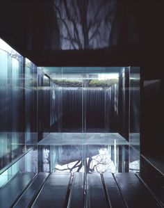 Image 3 of 36 from gallery of Les Cols Pavilions / RCR Arquitectes. Courtesy of RCR Arquitectes Interior Design Guide, Displays, Water House, Minimal Home, High Walls, Pool Landscaping, Brutalist, Water Features, Minimalist Design