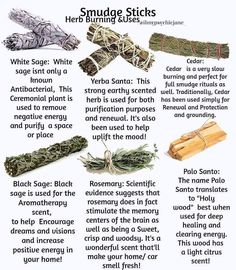 Smudge stick and their different uses. Learn how to use and burn herbs for cleansing! Smudging Prayer, Sage Smudging, Healing Herbs, Natural Healing, Medicinal Herbs, Yerba Santa, Cedar Smudge, Aerosoles, Witchcraft For Beginners