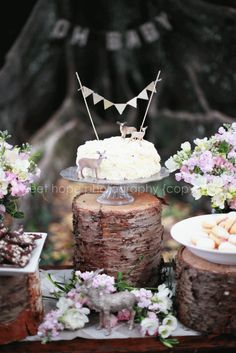 woodland Baby Shower: Sweet Hope Photography lovely ideas in post