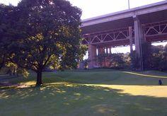 Don Valley Golf Course, North #Toronto.