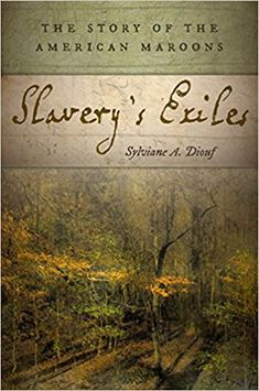 6904 best books images on pinterest libros books to read and slaverys exiles the story of the american maroons sylviane a diouf 9780814760284 fandeluxe Choice Image