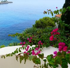 #Cap-d'Ail on the #French #Riviera