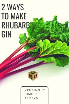 Come up with everything you can do by using a remarkable flask of gin, listed below are twenty delightful simple gin centered cocktails. Brewing Recipes, Vodka Recipes, Drinks Alcohol Recipes, Yummy Drinks, Alcoholic Beverages, Healthy Drinks, Cocktail Recipes, Healthy Recipes, Flavored Alcohol