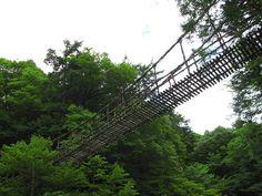Otoko Bashi (男橋) in the Inner Iya Valley (奥祖谷), Tokushima Prefecture