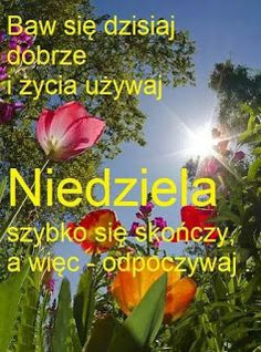 Weekend Humor, Plants, Mottos, Good Morning Funny, Night, Flora, Plant