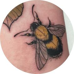 Tiny little bumble bee from last week  #bumblebee #bee tattoo #bees #neotrad #neotraditionaltattoo #neotraditional#tattoo #neotrad #tattoos #neotraditional #neotraditionaltattoo #neotraditionaltattoos #uktattoo #detailedtattoo #girlswhotattoo #girltattooist #naturetattoo #naturetattoos #animaltattoos #animaltattoo #illustration #illustrationtattoo #colourtattoo #tattoostencil #drawing #sketch #tattooist #flowertattoo #flowertattoos #wildlifetattoos