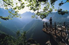Madeira Madeira Madeira