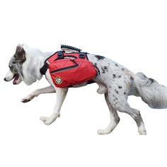 2019 Fashion Hot Sale Breathable Polyester Dog Protected Harness Vest Explosion-proof Traction Walking Device Mesh Pet Dog Harness Vest Attractive Appearance Pet Products