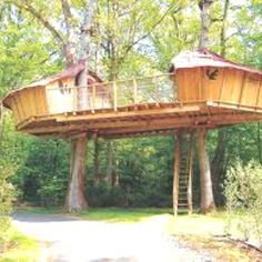 Really wanna do a tree house holiday!