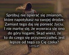 Zdjęcie użytkownika lovsy.pl.