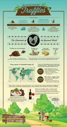 What are truffles? Chocolates or Mushrooms? http://raesaylor.hubpages.com/hub/Truffles-101-The-Ultimate-Luxury-Food