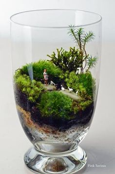 Lush green live moss terrarium with girl and geese in miniature apothecary jar