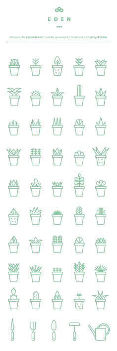 EDEN succulent icons designed by projekteden