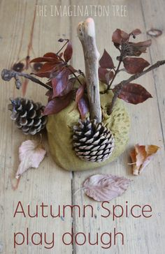 Make this wonderfully warm scented Autumn spice play dough recipe for lots of Fall themed invitations to play and learn! Great fall activity for kids!