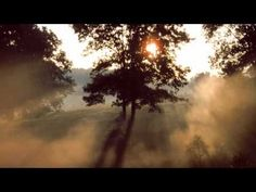 ▶ Don't Let The Sun Catch You Crying - Lyrics - Gerry And The Pacemakers - YouTube